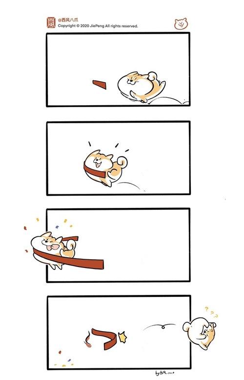 小狗勾永不言败!