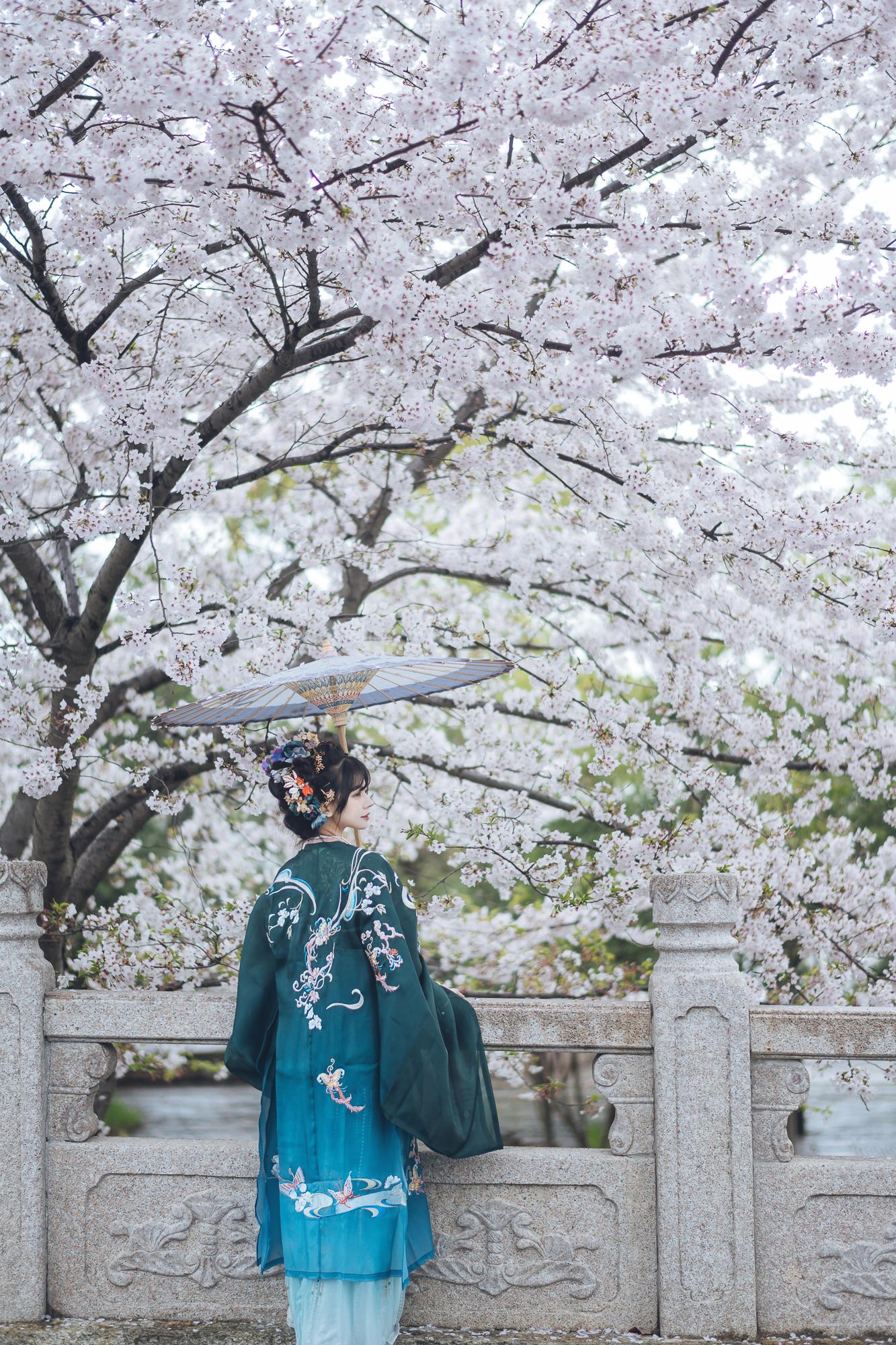 春花集 III 拍着拍着下起了雨插图(8)